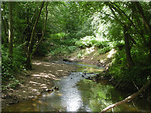 SO7481 : Borle Brook in summer by Row17