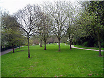 TQ4666 : Priory Gardens, Orpington by Dr Neil Clifton