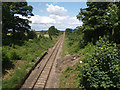 NZ5611 : Middlesbrough to Whitby railway line near Quarry House by Stephen McCulloch