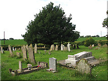 TG0934 : The church of SS Peter & Paul - churchyard by Evelyn Simak