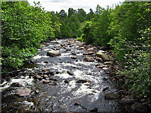 NO3492 : River Muick by Alan Findlay