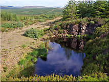 NG3151 : The lochan, the track and the forest beyond by Richard Dorrell