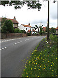 TG0934 : View north along the B1149 (Norwich Road) by Evelyn Simak