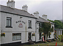 SD6715 : The Black Dog, Belmont by michael ely