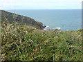 SM8519 : Black Cliff by Deborah Tilley
