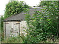 ST0372 : Cat on hot tin roof, Nr Llantrithyd. by Mick Lobb