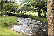 NY1700 : Whillan Beck, Dalegarth by John Firth