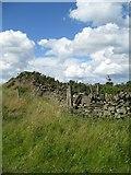 SK2077 : The limits of Bretton Moor by Alison Rawson