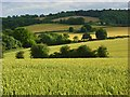 SP7800 : Farmland, Bledlow by Andrew Smith