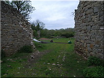 ST5295 : Piercefield House - view in to open ground near stables by Nick Mutton