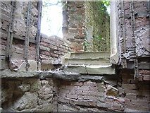 ST5295 : Piercefield House - remains of an ancillary staircase by Nick Mutton