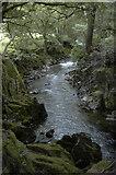 NY1700 : The River Esk by Tom Richardson