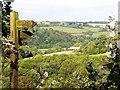 SO4321 : Monmouthshire Farmland by Stuart Wilding