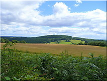 SO5212 : Looking east from the Kymin by Jonathan Billinger