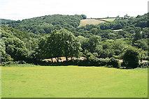 SX7070 : Widecombe in the Moor: near Hannaford Farm by Martin Bodman