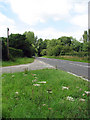 TG0124 : View north along the A1067 (Norwich Road) by Evelyn Simak