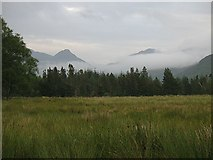 NM8263 : Damp fields, Ariundle by Richard Webb