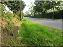O1472 : Milestone at Ministown, Co. Meath by Kieran Campbell