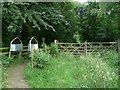 SE3400 : Newly created footpath through Potter Hole Plantation by Wendy North