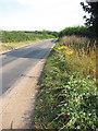 TG1316 : The Old Fakenham Road by Evelyn Simak