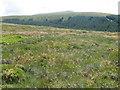 NS6202 : Wedder Hill to Millaneoch Hill by Chris Wimbush