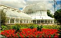 J3372 : The Palm House, Botanic Gardens, Belfast by Albert Bridge