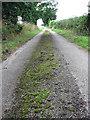 TG2325 : A rural farm road by Evelyn Simak
