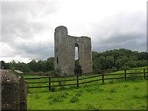 N9563 : Monktown Castle, Co. Meath by Kieran Campbell