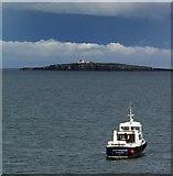 NU2135 : Inner Farne lighthouse by Steve  Fareham