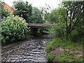 SO9063 : Bridge over the River Salwarpe by Chris Allen