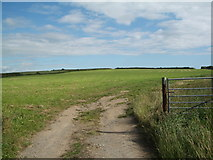 SM8331 : Pasture Land west of Llanon by Keith Salvesen
