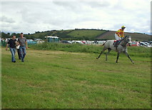 G9072 : Ballintra Races by louise price