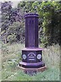 TM3996 : Cast Iron Monument, Raveningham by Geoff Pick