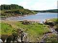 NS4979 : The north-eastern extremity of Burncrooks Reservoir by Lairich Rig