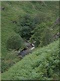 SN7650 : Doethie gorge by Rudi Winter