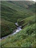 SN7649 : Afon Doethie rapids by Rudi Winter