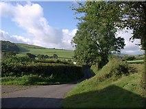 SX8460 : Lane at Longcombe by Derek Harper