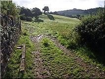 SX8460 : Field, Higher Longcombe by Derek Harper