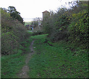 SE8924 : Downhill to Whitton by David Wright
