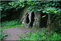 SK4338 : The Hermitage by David Lally