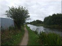 SK0305 : Wyrley and Essington Canal - near Pelsall Road by John M
