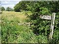 SJ2531 : Footpath on Baker's Hill by Chris Heaton