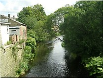 SE1115 : River Colne - viewed from Market Street, Milnsbridge by Betty Longbottom