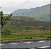 C7704 : Sperrin Mountains near Glenshane Pass by C Michael Hogan