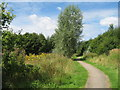 SJ4885 : Footpath, Clincton Wood Local Nature Reserve by Sue Adair