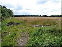 O0235 : Field Near Coldblow by Ian Paterson
