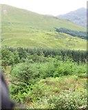 NN0550 : Looking across Glen Creran, ridge of Beinn Fhionnlaidh (Finlay) rising to right by Phillip Williams