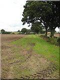 SO7729 : Field boundary  west of Staunton by Pauline E