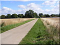 TL4553 : The Entrance Drive to Shelford Rugby Club by Adrian Cable