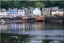 NM5055 : The waterfront Tobermory by Tom Richardson